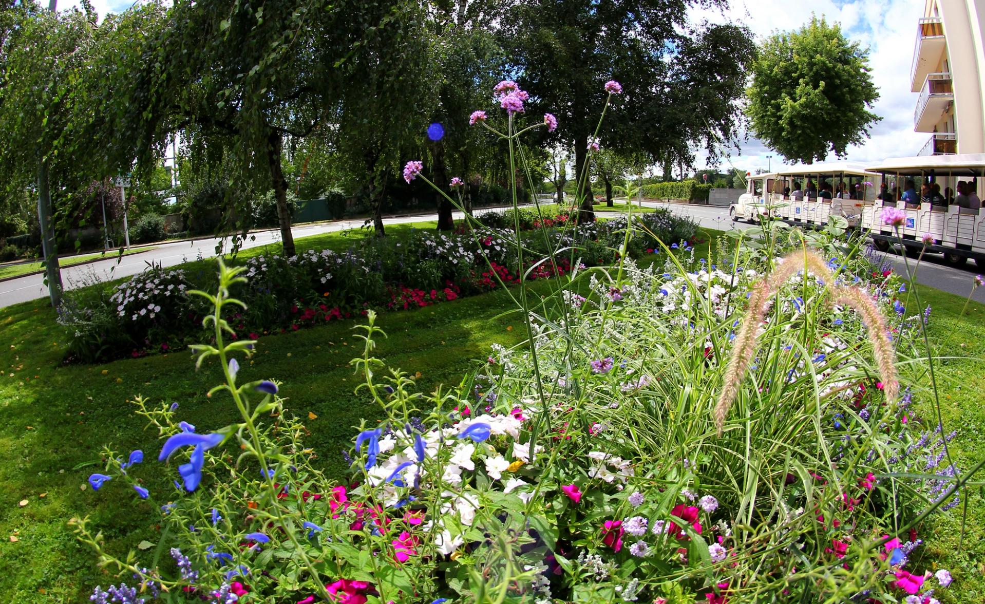 Espaces verts vichy ville fleurie for Importance des espaces verts