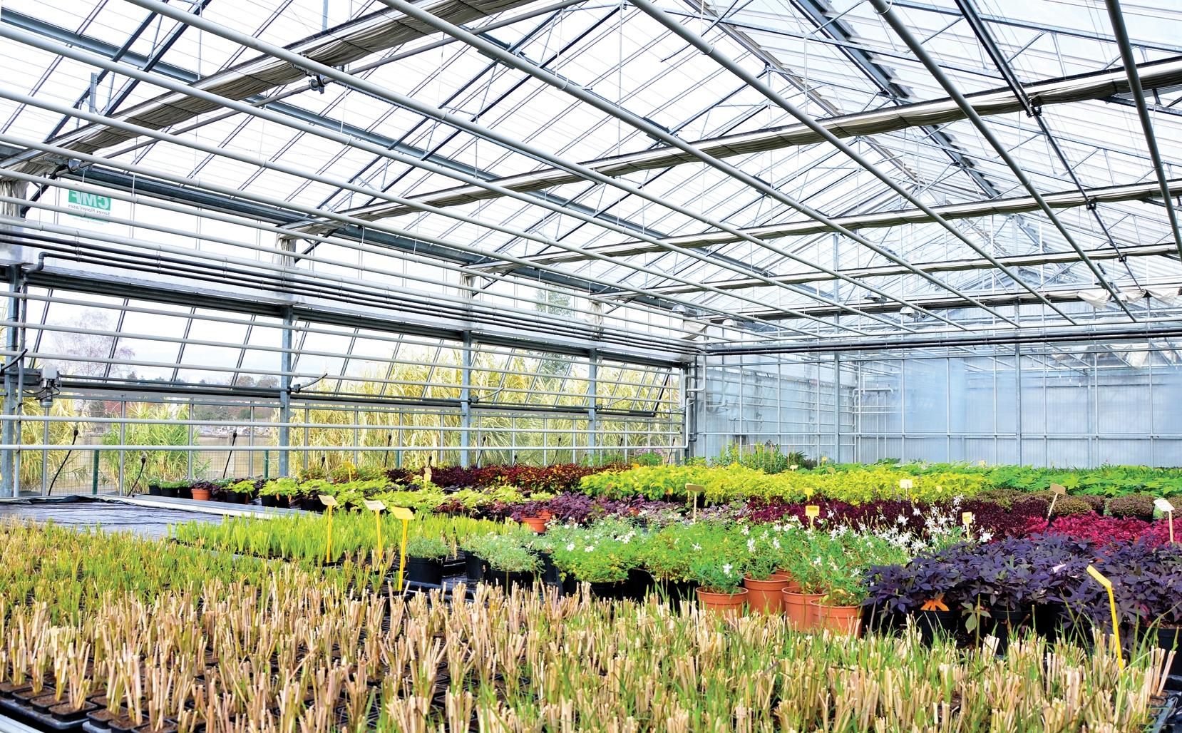 Centre de production horticole jardin en hiver for Centre de jardin
