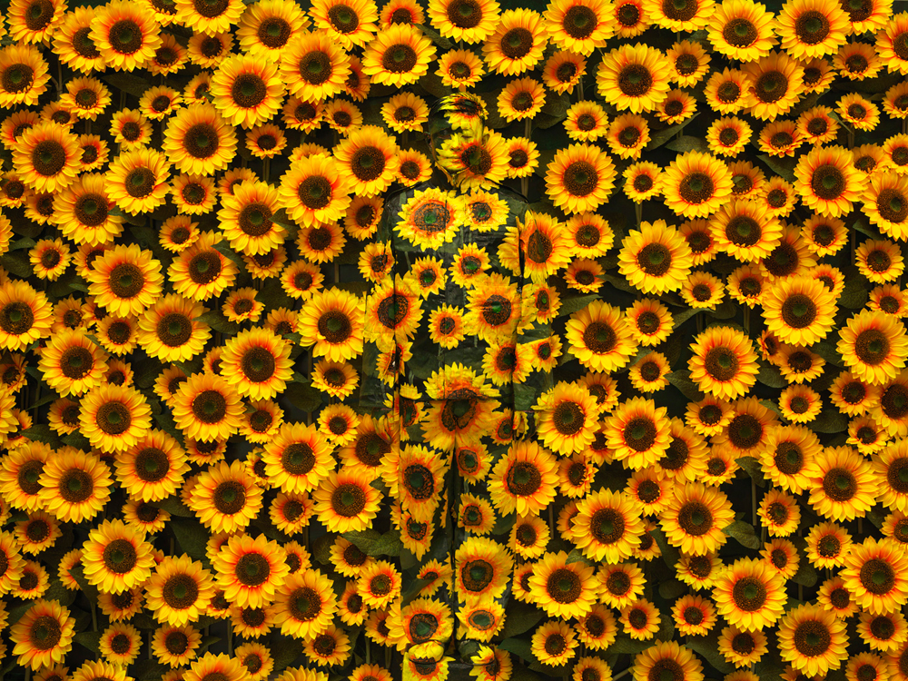 Sunflower, série Hiding in the City, 2010 © Liu Bolin. Courtsey galerie Paris-Beijing